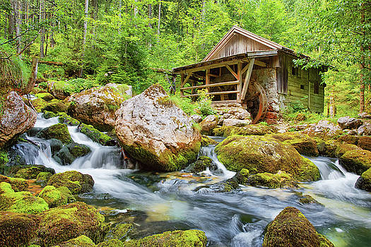 The Old Mill by Claudia Domenig
