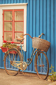 The old rusty lady bicycle by Martin Bergsma