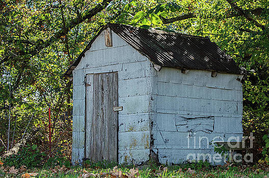 The Old Shed by Diane Friend