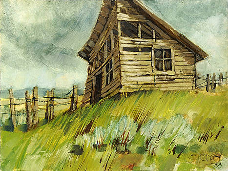 The Old Shed by Steve Spencer