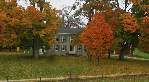 The Old Townsend Homestead by Coleen Harty