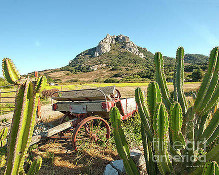 The Old Wagon and Cactus patch in front of one of the Seven Sisters in San Luis Obispo California by Artist and Photographer Laura Wrede