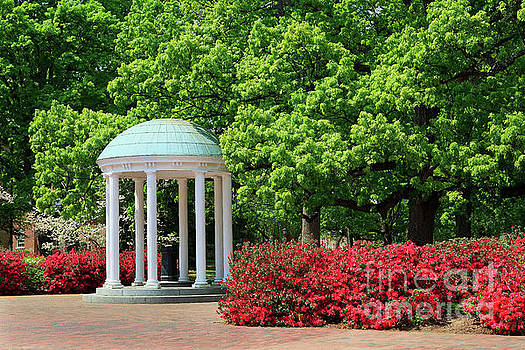 Jill Lang - The Old Well on UNC Chapel Hill Campus