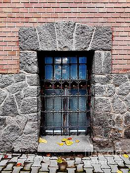 The Old Window - 2 by Erika H