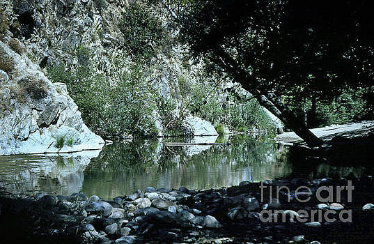 California Views Mr Pat Hathaway Archives - The Ole swimming hole on the Carmel River just below The Bucket 1955