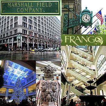 The One and Only Marshall Fields by Elizabeth Rye
