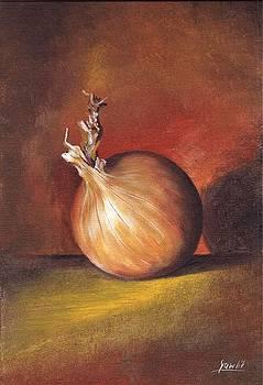 The Onion by Ewa Gawlik