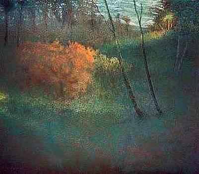 The Orange Bush by Brian Higgins