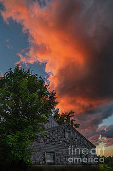 The Orange Dragon by Scott Thorp