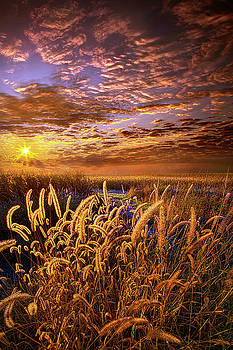 The Outer Fringes by Phil Koch