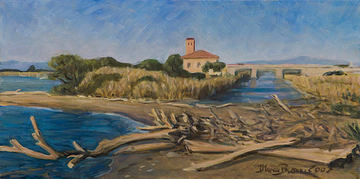 The outfall of Ombrone river by Marco Busoni