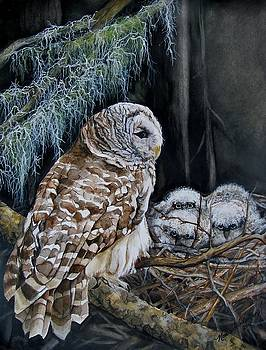 The Owl's Nest by Nonie Wideman