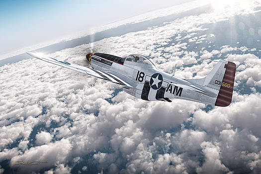 The P-51 Mustang by David Collins