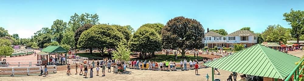 Kristia Adams - The Paddock Area At Monmouth Park