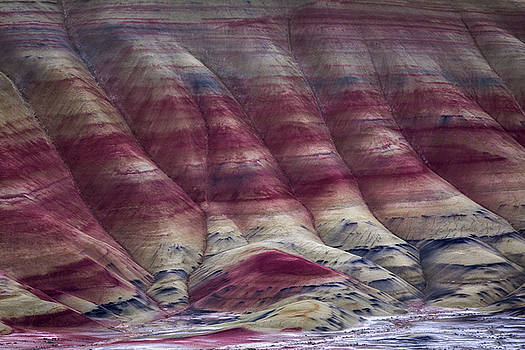 Chris Steele - The Painted Hills