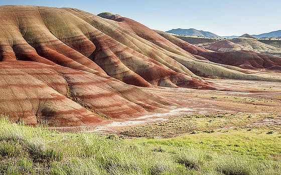 The Painted Hills in Profile by Tim Newton