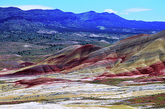 Kathy Kelly - The Painted Hills Oregon