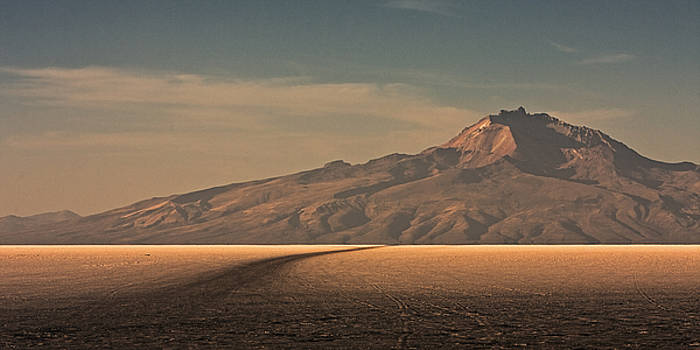 The Painted Salar by Ron Dubin