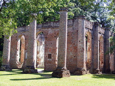 The Palmetto Phoenix Old Sheldon Church Ruins by Elena Tudor