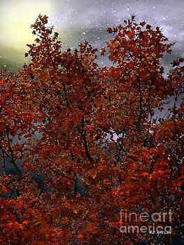 The Passion of Autumn by RC deWinter