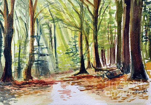 The Path by Allison Ashton