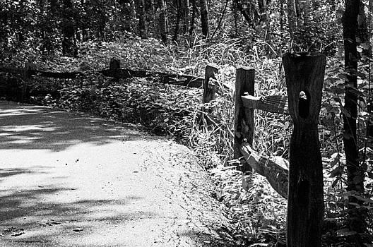 The Path by Edward Congdon