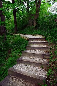 The Path I Chose by Jeffery Bennett