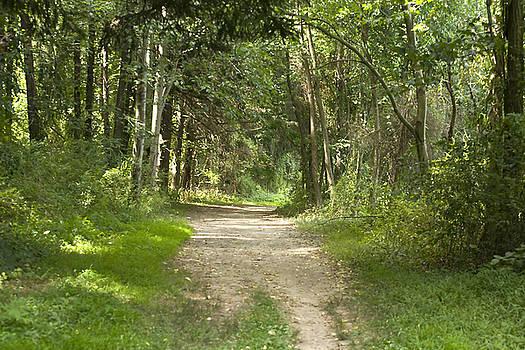The Path Less Taken by John Holloway
