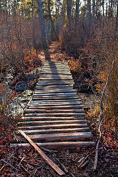 Kristia Adams - The Path Less Traveled