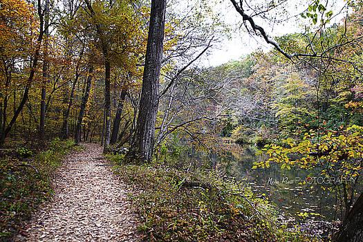 The Path by Nena Pratt