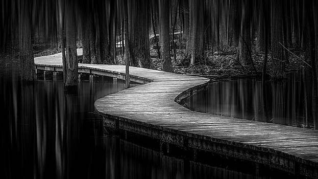 The Path of Life by Yves Keroack