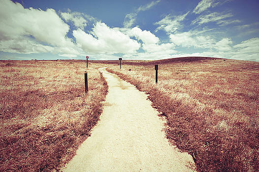 The Path Taken by THiRDiPHOTO
