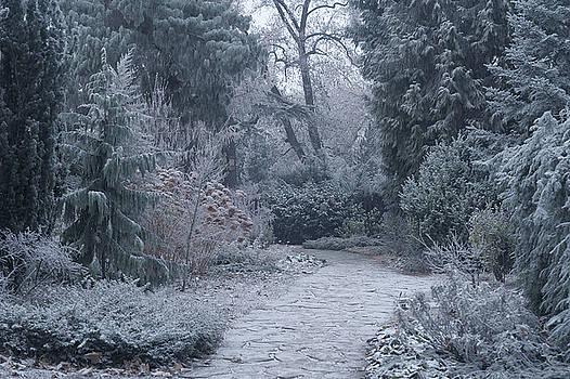 Jenny Rainbow - The Pathway. Enchanted Winter Garden