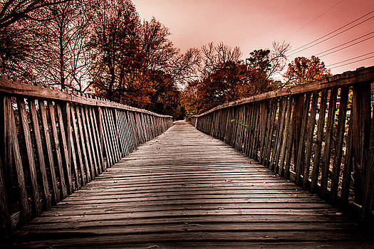 The Pathway by Kenny Thomas