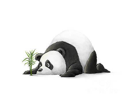 The Patient Panda by Michael Ciccotello