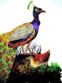 The Peacock by Rupali  Motihar