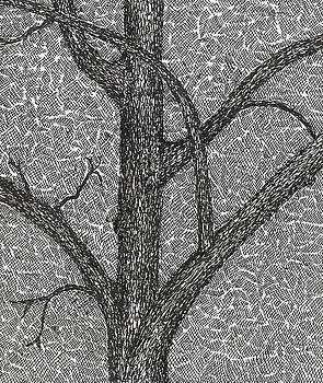 The Pecan Tree by Melanie Rochat