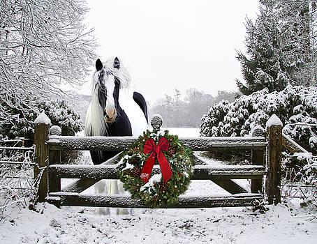 Terry Kirkland Cook - The Perfect Christmas