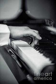 Benjamin Harte - The Pianist