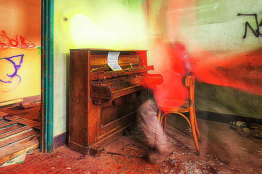 The Piano Player by Enrico Pelos