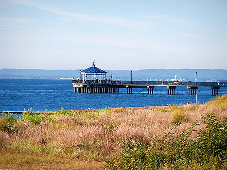 The Pier by Jacqueline Cappadora