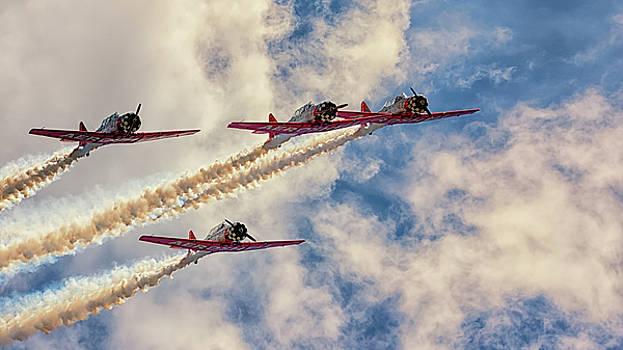 Susan Rissi Tregoning - The Pilot Maker