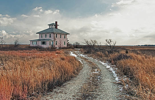 The Pink House by Wayne Marshall Chase