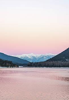 The Pink Sky of Winter by Joy McAdams