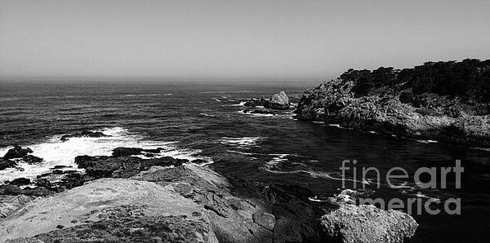 The Point Lobos Coastline 8 by Chris Berry