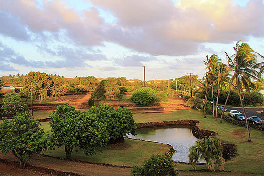 The Pond at Prince Kuhio Park by Bonnie Follett