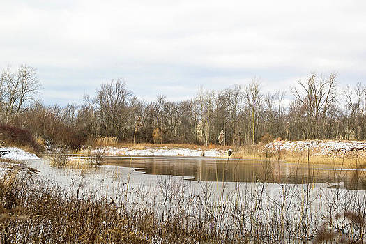 The Pond at Waverly Woods by Linda Joyce