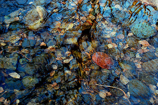 The Pond in Autumn by Marilynne Bull