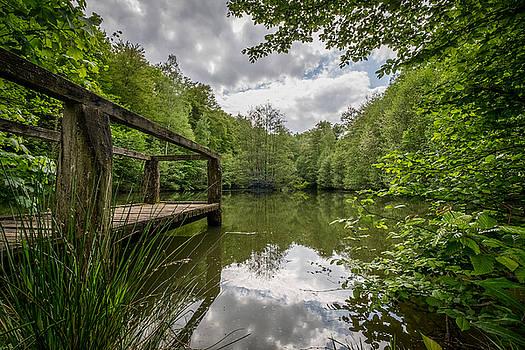 The Pond by Jan Schwarz