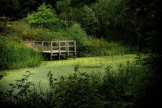 Jeremy Lavender Photography - The pond